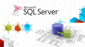 tech-coffee-sql-server2
